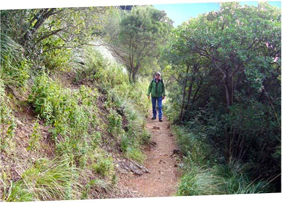Wanderweg für San Fruttuoso