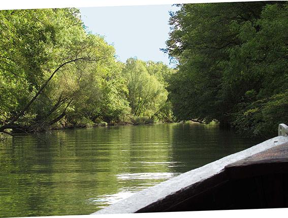 Lagon de Kamchiya