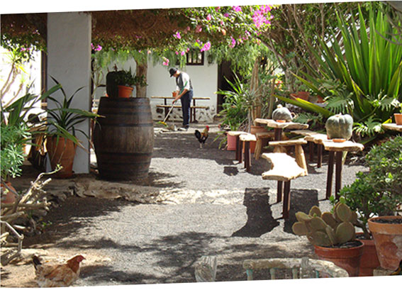 The Museo Agricola El Patio in Tiagua