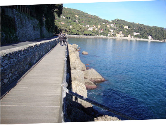 Le chemin pour Portofino