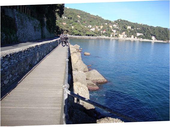 The path to Portofino