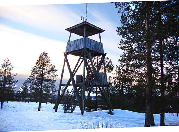 tower in the woods