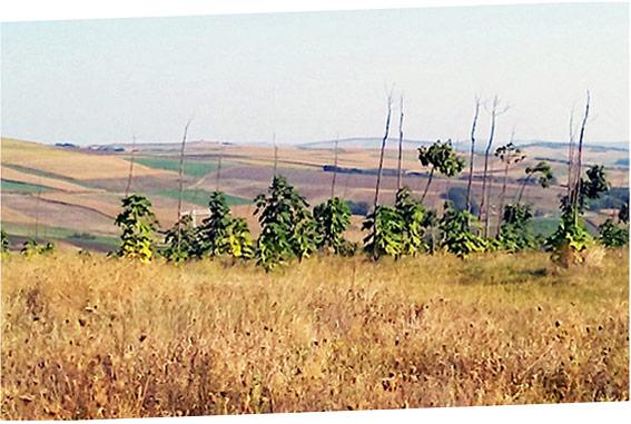 Schönen Landschaft