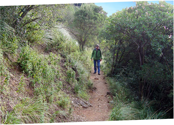 Der Weg nach San Fruttuoso